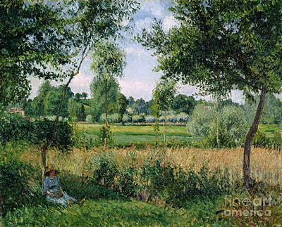 Meadow Painting - Morning Sunlight Effect At Eragny by Camille Pissarro