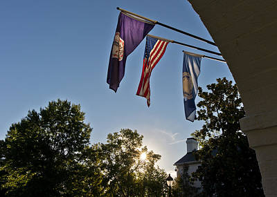 Photograph - Morning Sunlight Through Flags by Lori Coleman
