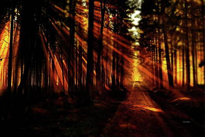 Sun Rays Digital Art - Morning Sunrays by Russ Harris