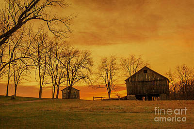 Bare Trees Digital Art - Morning Sunrise On The Farm by Randy Steele