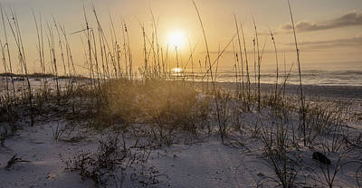 Photograph - Morning Sunrise Over The Dunes  by John McGraw