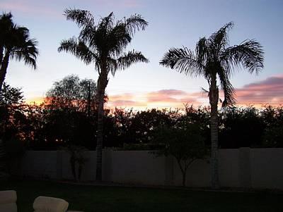 Photograph - Morning Sunrise by Pamela Walrath