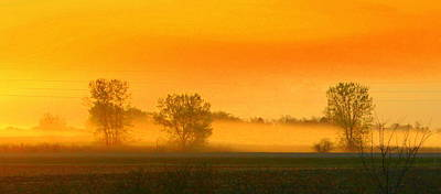 Photograph - Morning Sunshine by Julie Lueders