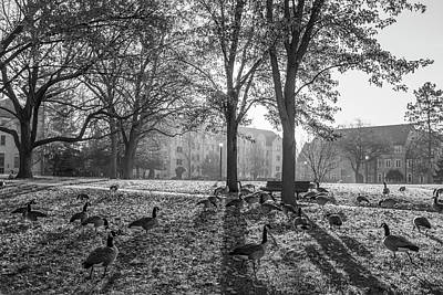 Photograph - Morning University Of Notre Dame Campus  by John McGraw