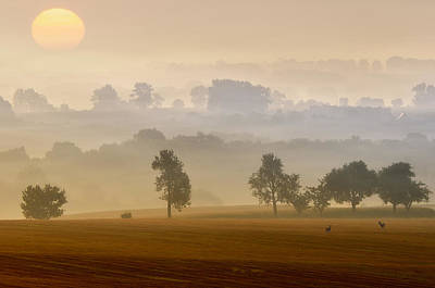 Morning View Print by Piotr Krol (bax)