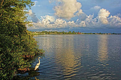 Photograph - Morning Walk by HH Photography of Florida