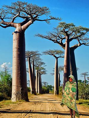 Photograph - Morning Walk Madagascar by Dominic Piperata
