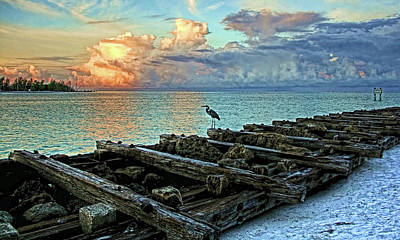Photograph - Morning Watch by HH Photography of Florida