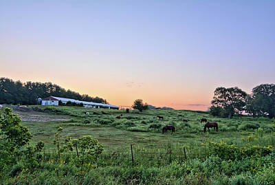 Photograph - Morning With Horses by Bonfire Photography