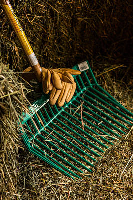 Photograph - Morning's Chores by Laddie Halupa