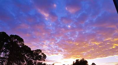 Florida Photograph - Mornings Gift by Ric Schafer