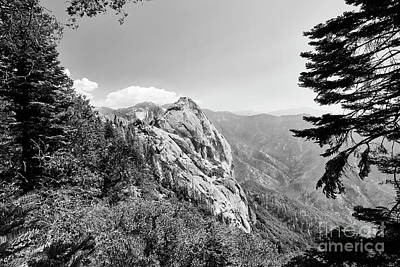 Photograph - Moro Rock Sequoia National Park by Traci Law