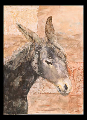 Moroccan Donkey Art Print by Laura Vazquez