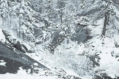Photograph - Morozko, The Slavic Patron Of Winter  by Bijan Pirnia