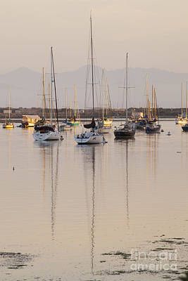 Photograph - Morro Bay Boats In Early Morning Light   by Sharon Foelz