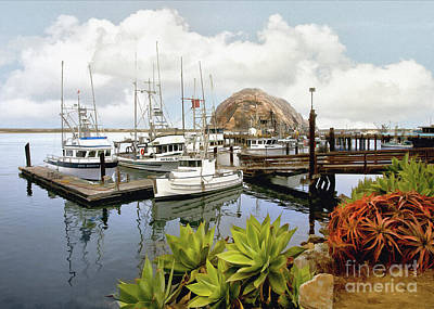Photograph - Morro Bay Harbor Shore by Sharon Foster