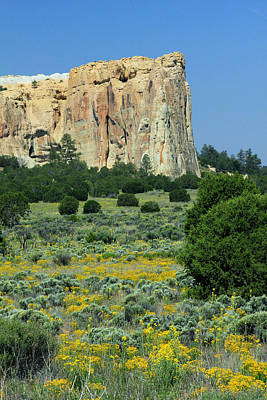 Photograph - 2d14471-morro Rock And Wildflowers  by Ed  Cooper Photography