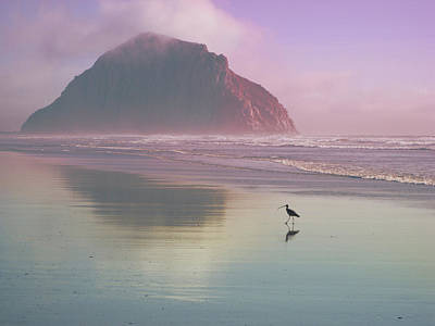 Photograph - Morro Rock by Kevin Bergen