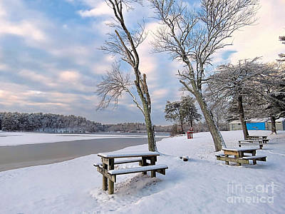 Photograph - Morton Park In February by Janice Drew