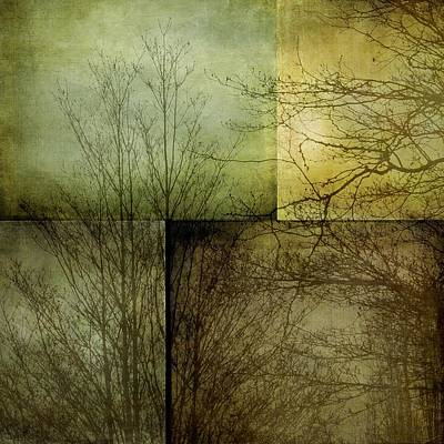 Photograph - Mosaic - Mist And Trees by Patricia Strand