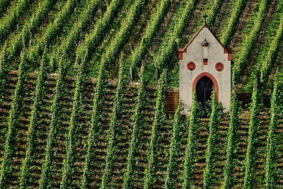 Photograph - Mosel River Vinyard No. 2 by Joe Bonita