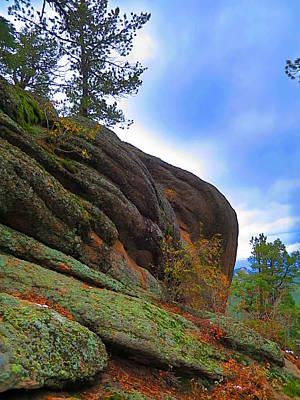 Moss At Cliffside Art Print