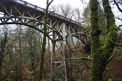 Photograph - Moss Bridge by Dylan Punke