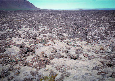 Photograph - Moss-covered Lava Flow, Iceland by Richard Goldman