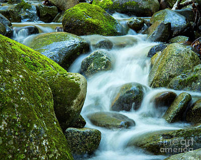 Photograph - Moss Covered Rocks by Alana Ranney