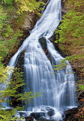 Photograph - Moss Glen Falls Stowe by David Freuthal