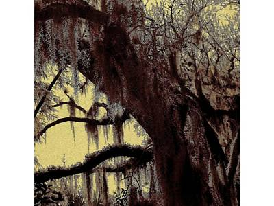 Mixed Media - Moss Of The Old South by Florene Welebny