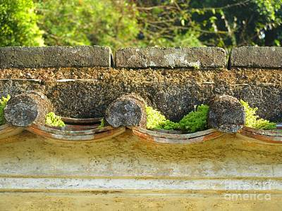 Moss On An Old Chinese Roof Art Print by Kathy Daxon