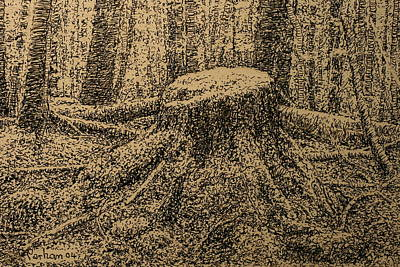Drawing - Moss On The Stump by Terry Perham