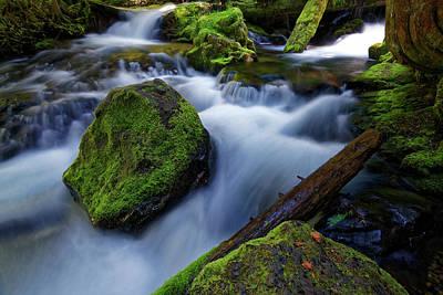 Photograph - Moss Rock by Jonathan Davison