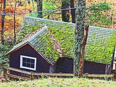 Moss Roof Art Print by Beebe  Barksdale-Bruner