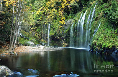 Mossbrae Falls Art Print by Robert McConnell