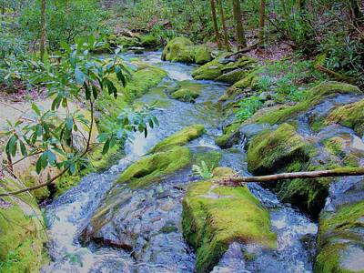 Photograph - Mossy Blue Brook by Joshua Bales