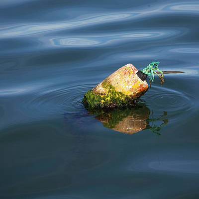 Photograph - Mossy Buoy by Art Block Collections