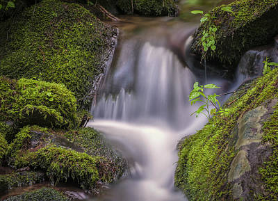 Photograph - Mossy Cascade by Tyson and Kathy Smith