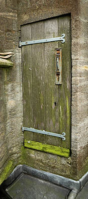Photograph - Mossy Door by Jean Noren