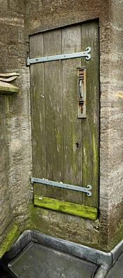 Photograph - Mossy Door by Jean Noren