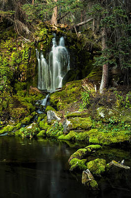 Photograph - Mossy Falls by Joe Sparks