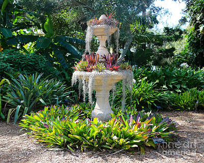 Photograph - Mossy Fountain With Bromeliads by Carol Groenen