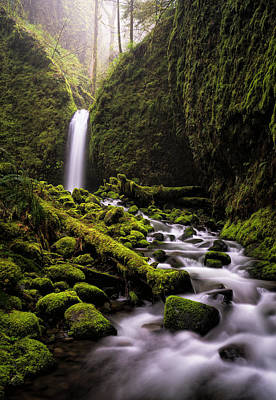 Photograph - Mossy Grotto by Brian Bonham