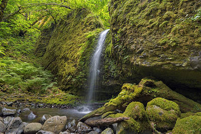 Stream Photograph - Mossy Grotto Falls In Summer by David Gn