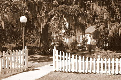 Photograph - Mossy Live Oak And Picket Fence by Carol Groenen