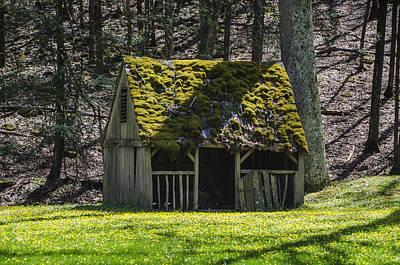 Manger Digital Art - Mossy Manger In Spring by Bill Cannon