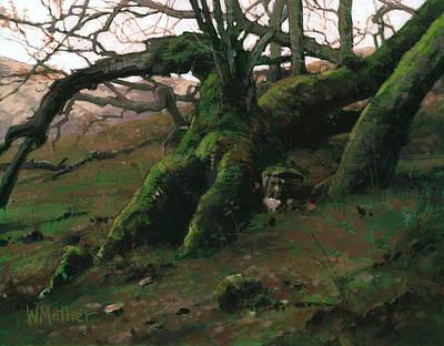 Mossy Oak Art Print by Bill Mather