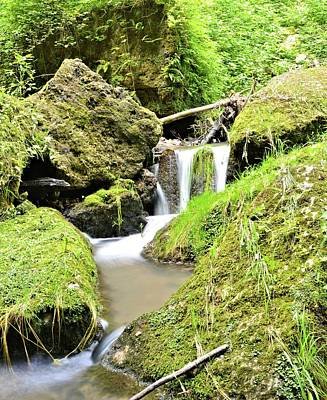 Photograph - Mossy Paradise by Bonfire Photography