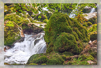 Photograph - Mossy Rock Creek by Hanny Heim